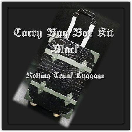 CarryTrunk-Black-main